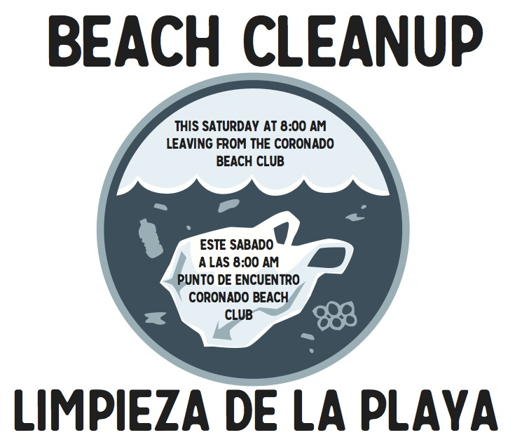beach clean up